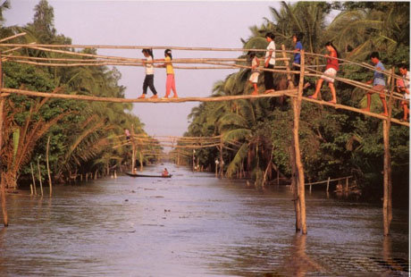 Monkey bridge-a simple bridge in Mekong delta